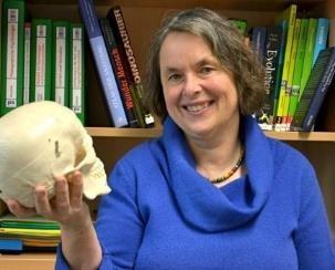 Dr. Claudia Wulff